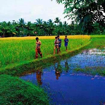 Beautiful Nature View of Kerala Tour