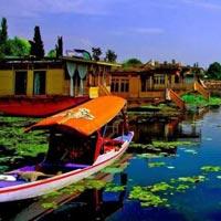 Blooming Kashmir Tour