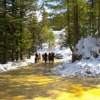 Mystic Himachal Tour