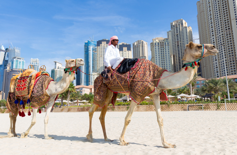 Dil Se Dubai Tour