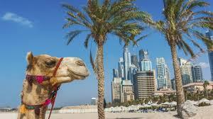 Exciting Dubai Tour