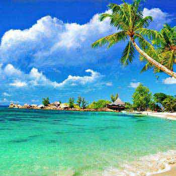 Romantic Goa Honeymoon Tour