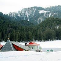 Enjoy Himachal in Season Tour
