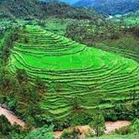Himalayan Tranquility Darjeeling,Gangtok, 5 Days / 4 Nights Tour