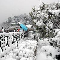 Shimla Kullu Manali Honeymoon Packages