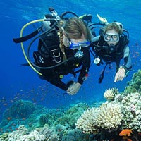 Exotic Andaman - 6 Nights 7 Days