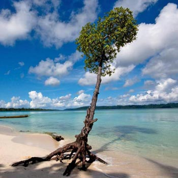 Andaman with Havelock Special Tour