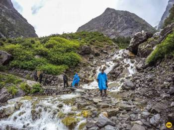 Hemkund Sahib & Valley Of Flower Trekking Tour