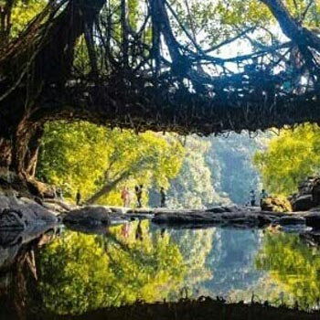 Meghalaya - A Journey To The Clouds Tour