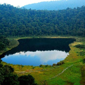 Shillong-Kaziranga Package Tour