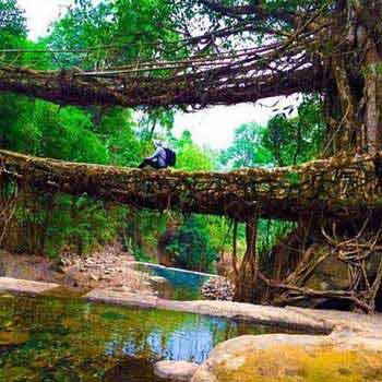 Meghalaya Adventure Tour 5 Nights 6 Days