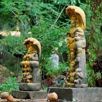 Exclusive Kaziranga Shillong Tour