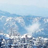 Beautiful Of Shimla Tour