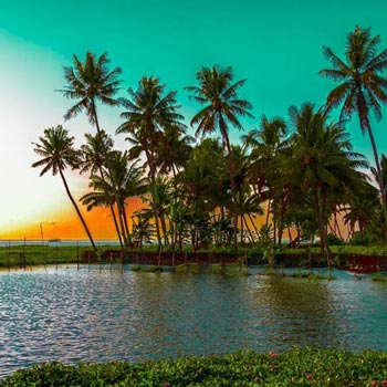 Kerala Diaries – 05 Nights 06 Days Tour