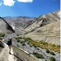 Sham Trek With Home-Stay Tour