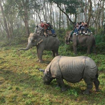Kathmandu - Chitwan - Pokhara - Nagarkot ( Eco Village Tours)