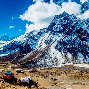 Langtang Valley Trek Trekking Tour
