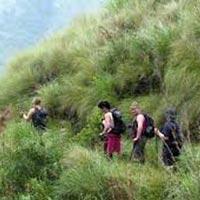 Kerala trek tour