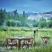 8 Days TUTC Glamping in Ladakh Tour