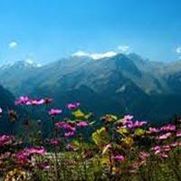 4N/5D – Chandigarh – Shimla – Manali Tour