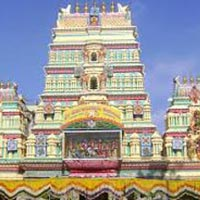 Mysore & Ooty Tour