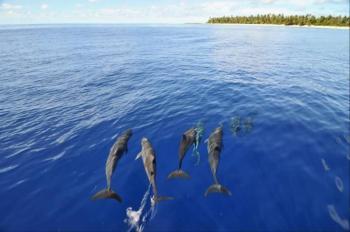 Marshall Islands Tour