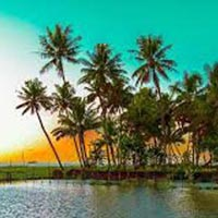 Amazing Tour of Kerala