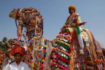 Enjoyable Rajasthan Tour 7 Days Tour