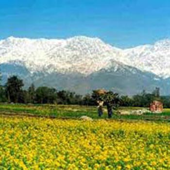 Himalayan Holiday Package -Explore Himachal