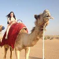 Rajasthan Tourism Honeymoon Tour