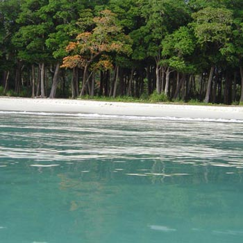 Andaman  5 day Tour