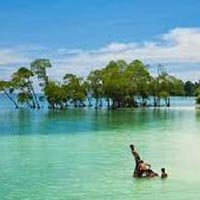 4 Nights5 Days Andaman Special Family Tour Package