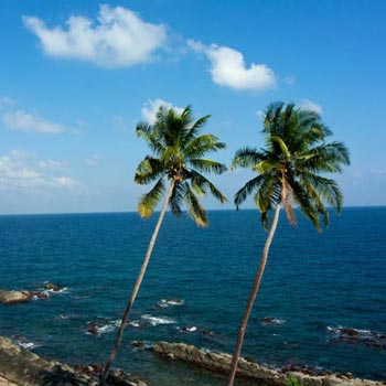 Port Blair and Havelock Trip Tour