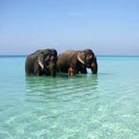 Explore Havelock Island Package