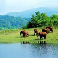 Short Escape to Periyar Tour