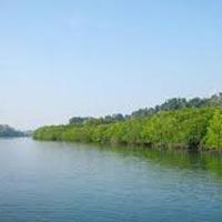 Exotic Andaman Tour