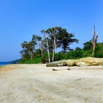 chidiyatapu beach