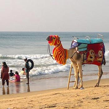 Puri Beach package