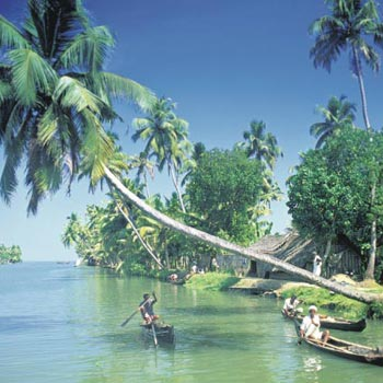 Cochin Munnar Romantic Tour Package