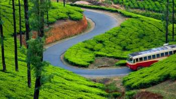 4 Nights 5 Days Kerala Tour