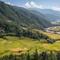 Phuentsholing-Thimphu-Paro Tour