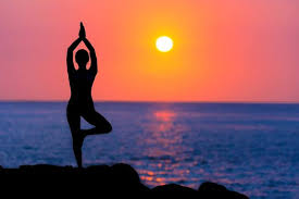 5nights - 6days Dharamshala Group Yoga Package