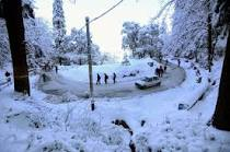 Romentic Shimla Package