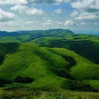 Wonders of Wayanad Tour