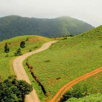 Coorg  4  Day  Tour