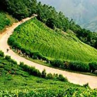 Kerala -Honeymoon Tour