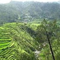 Nanda Devi Sanctuary Trek Tour