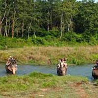 Rafting And Wildlife Tour