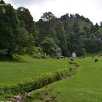 6 Night / 7days Nainital, Kausani, Binsar Tour