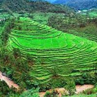 9 Nights / 10 Days Lohaghat, Munsiyari, Kausani, Nainital Tour